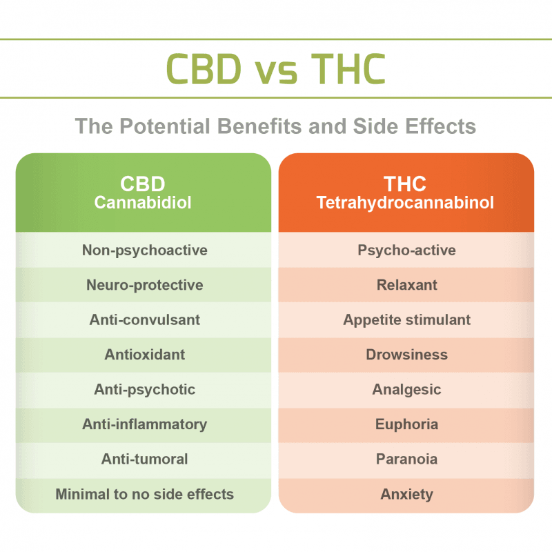 cbd-vs-thc-1